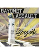 Bayonet Assault ‎– Sorgente